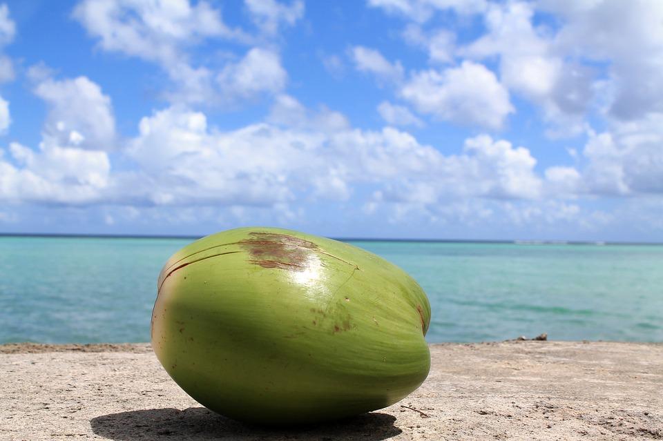 coconut-1179414_960_720